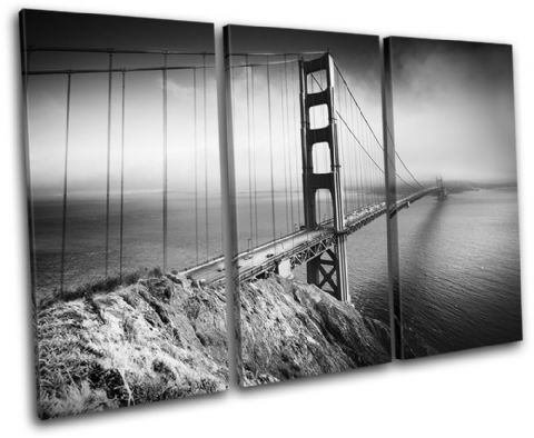 San Francisco Bridge Architecture - 13-1420(00B)-TR32-LO